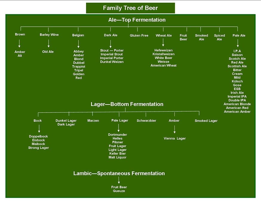 Family_Tree_Large